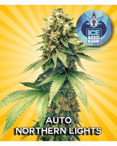 Auto Northern Lights Seeds