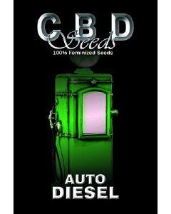 Auto Diesel Seeds