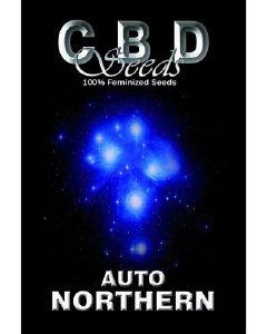 Auto Northern Seeds