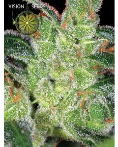 Cheese Seeds