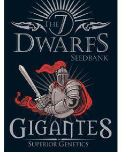 Gigantes Seeds - 5