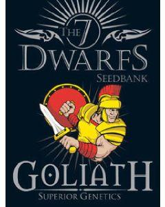 Goliath Seeds - 5