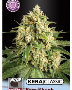 Kera Classic - Skunk Seeds