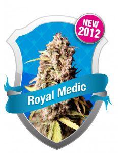 Royal Medic Seeds