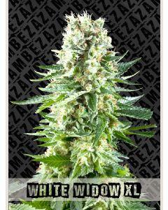 White Widow XL Seeds
