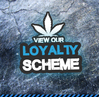 View loyalty scheme
