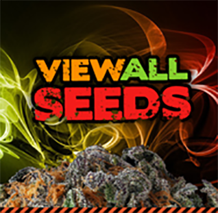 ICE Cannabis Seeds | Buy Marijuana Seeds from UK